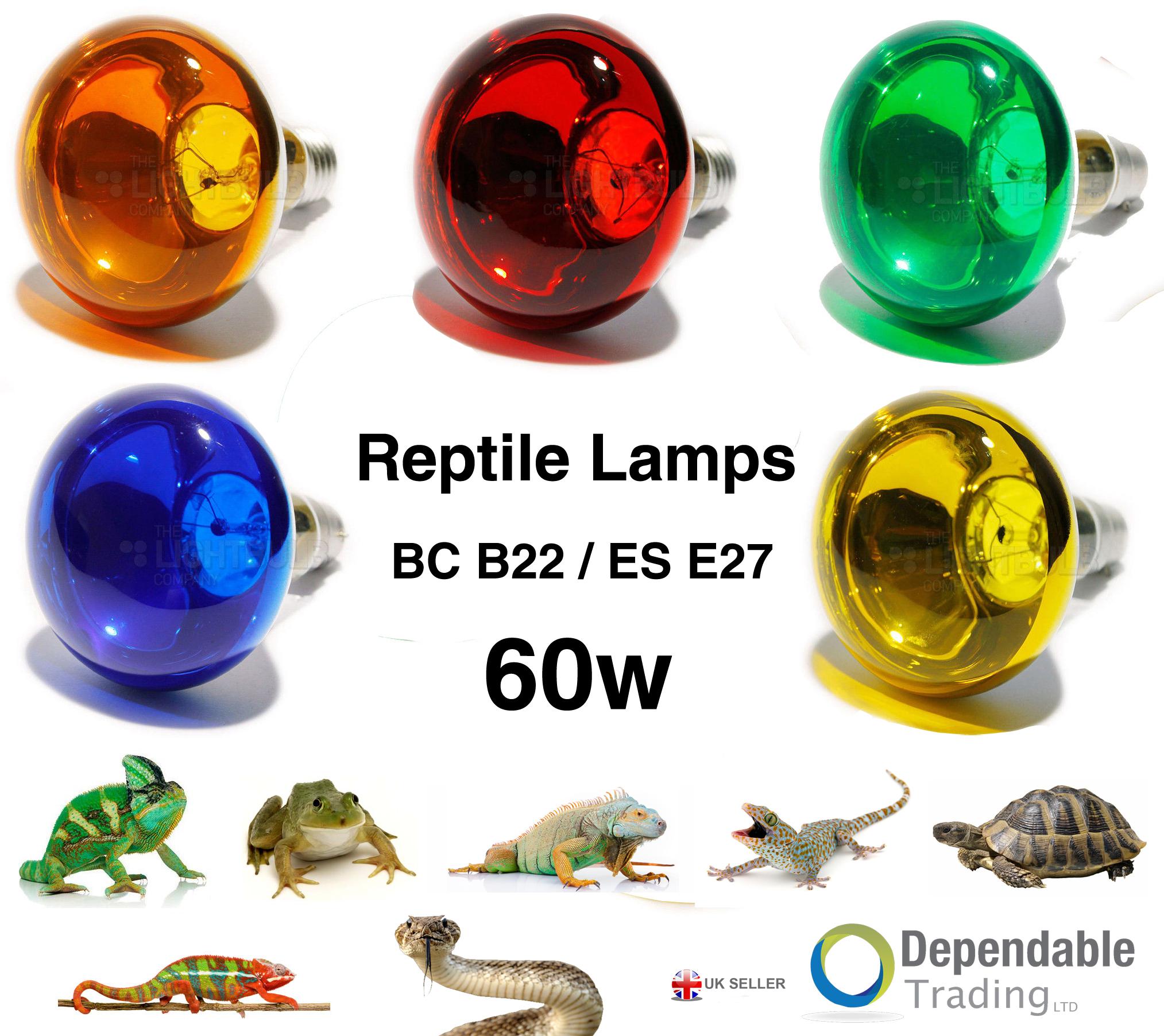 Reptile Basking Heat Lamp Bulb 60w Red Amber Yellow Blue Green R80 Bc B22 Es E27 Ebay